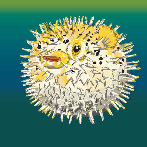 Go Back > Gallery For > Blowfish Drawing
